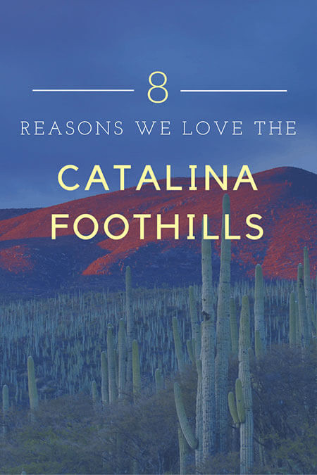8 Reasons We Love Catalina Foothills