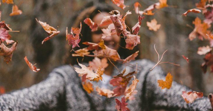 fall-interior