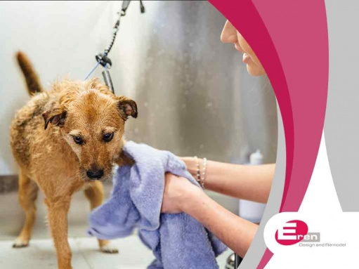 What You Need to Know About Pet Washing Stations